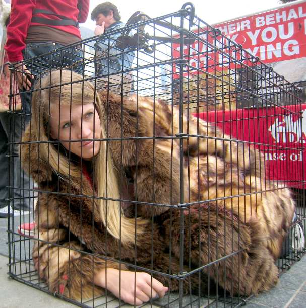 anti fur The latest tweets from anti fur (@furiscruel).
